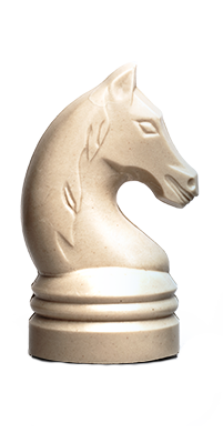 Paard TJIP zonder wit