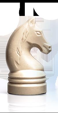 Paard TJIP