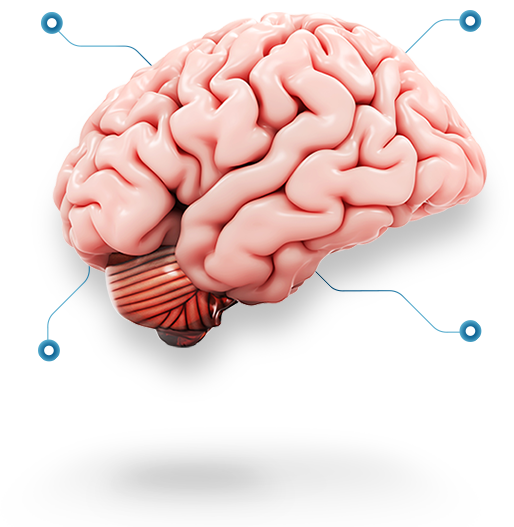 TJIP brain tought leaders