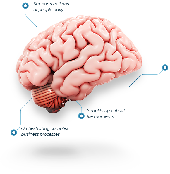TJIP brain thought leaders